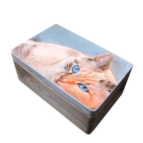 pudełko z kotem